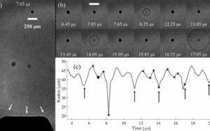An analysis of the acoustic cavitation noise spectrum: The role of periodic shock waves